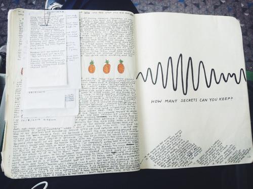 Писательский дневник